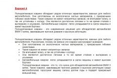Автомобильные-коврики-Вариант-4