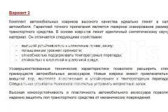 Автомобильные-коврики-Вариант-3