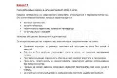 Автомобильные-коврики-Вариант-5