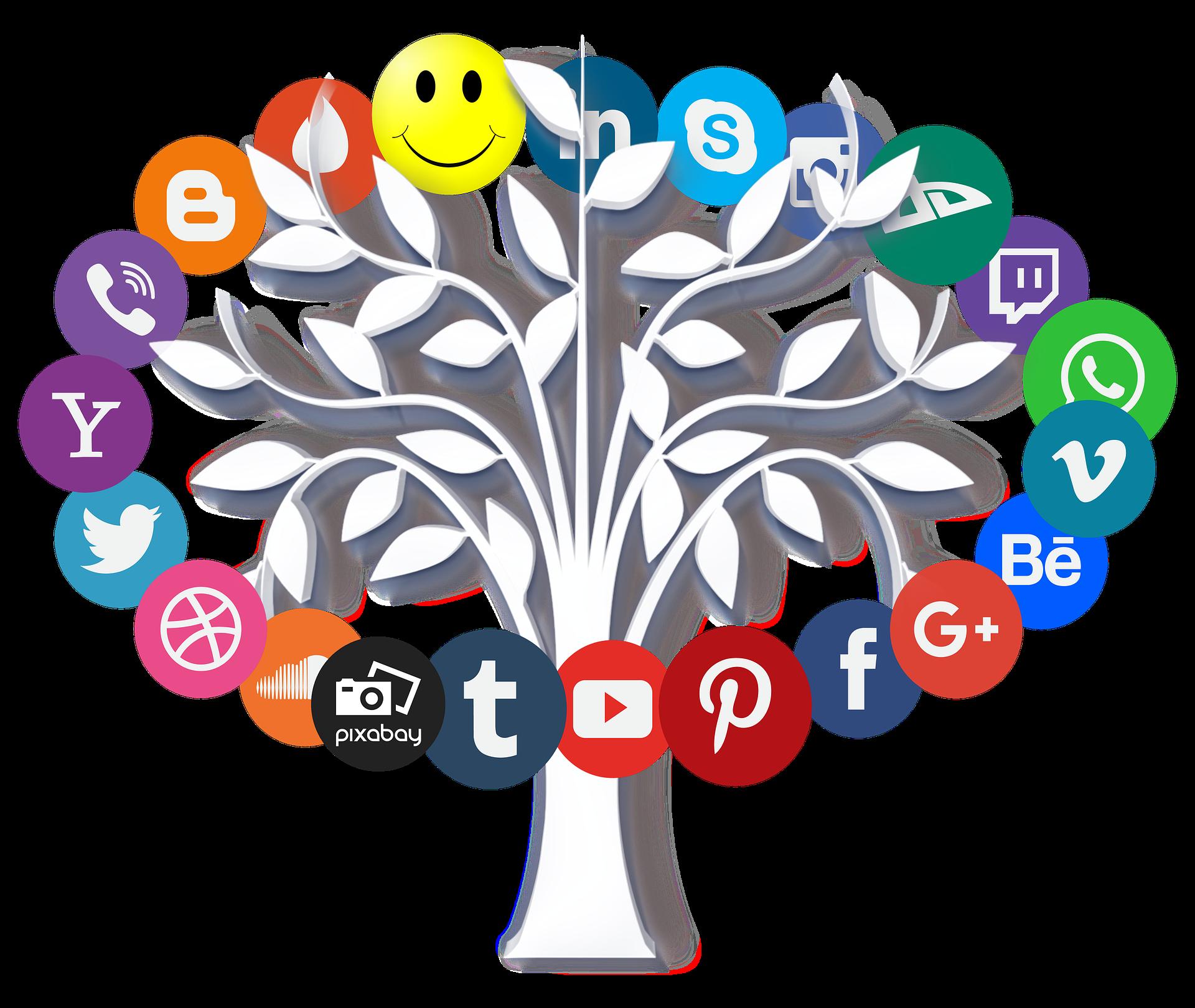 SEO оптимизация и поисковое продвижение сайта